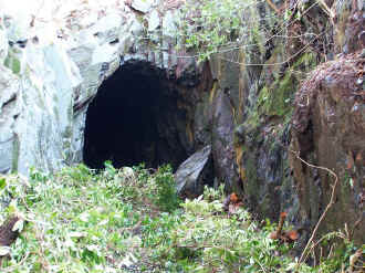 S9_BWH19-3-05Goat Tunnel from trackbed.jpg (97847 bytes)