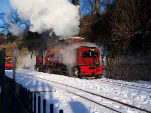 138_BWH19-12-10shunts in snow A.jpg (101244 bytes)
